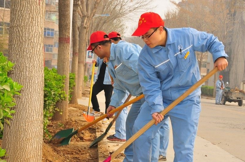 公司团委组织开展环境绿化整治志..